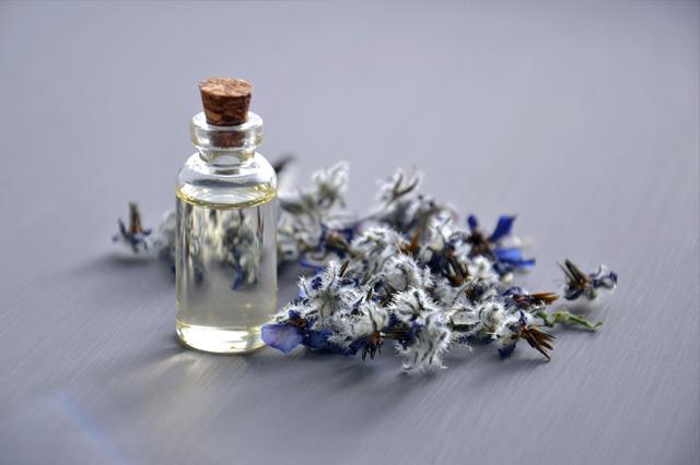 Essential Oil – Sage